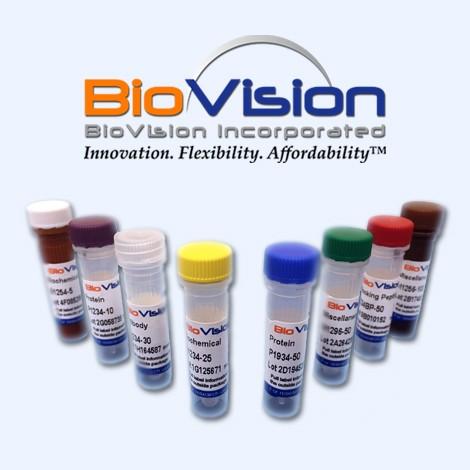 محصولات شرکت BioVision را در سایت آثل طب مشاهده نمایید .