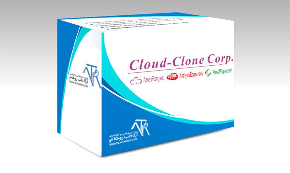 شرکت Cloud-Clone-Corp