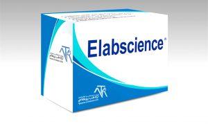 شرکت Elabscience