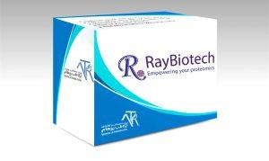 شرکت RayBiotech