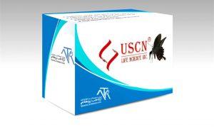 شرکت UCSN