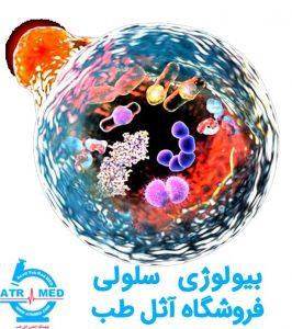 بیولوژی سلولی