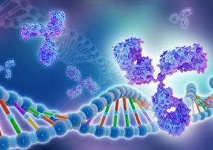 تحقیق و توسعه در زمینه تولید انواع پروتئین های نوترکیب
