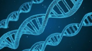 ژنتیک مولکولی چیست؟